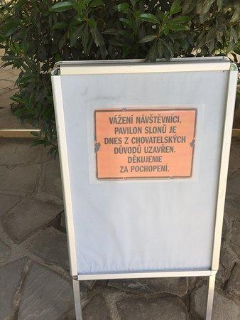 "Zlin, สาธารณรัฐเช็ก: Pavilon slonov uzatvoreny z ""chovatelskych dovodov"""