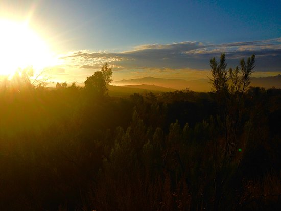 Rancho La Puerta Spa: Sunrise hike on the Professor's Trail... loved this one.