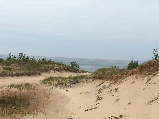 Mac Wood's Dune Rides : photo1.jpg
