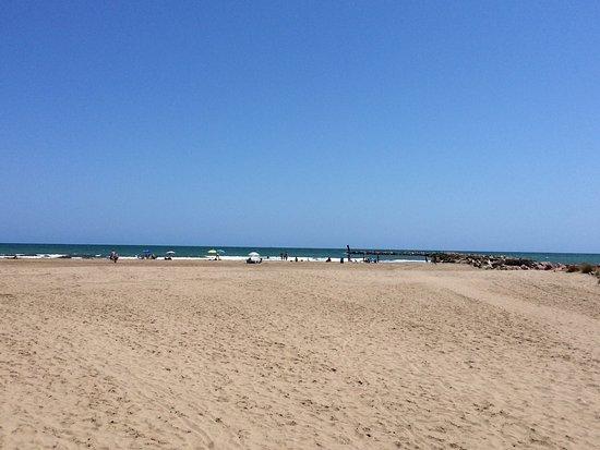 SH Florazar Valencia: photo1.jpg