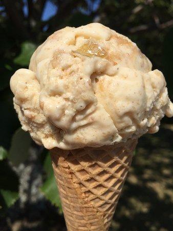 Belfast, ME: Wild Cow Creamery Handcrafted Ice Cream