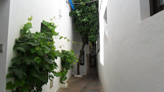 Calleja del Panuelo