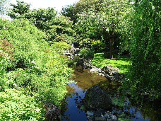 A tuin den helder webcam