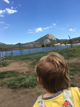 Estes Valley Dog Park