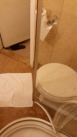 Hotel Flora: Shower door touching the toilet. Miniscule bathroom!