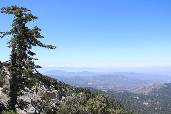 Idyllwild, CA: Tahquitz Peak from the South Ridge Trail