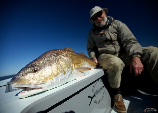 Metairie, LA: Louisiana Bull Redfish on Fly