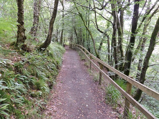 Auchinleck, UK: A section of the Gorge Walk