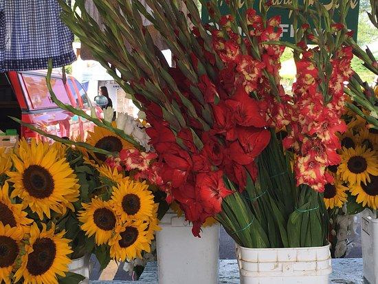 Bank Street Farmer's Market: Beautiful flowers