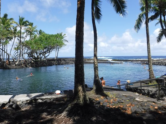 "Pahoa, Hawaï: The ""pond"" at the park"