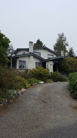 South Coast Inn Bed and Breakfast: photo0.jpg