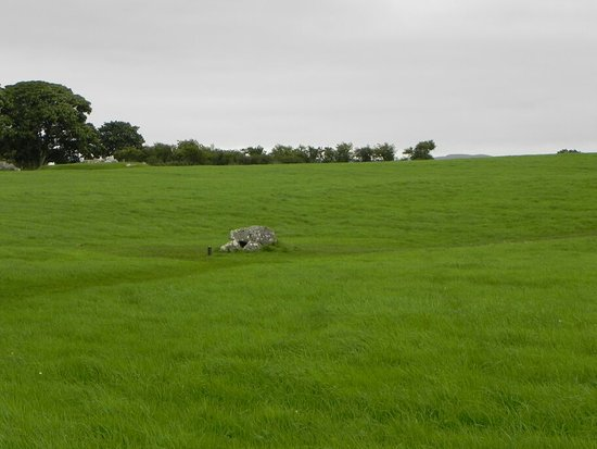 Carrowmore Megalithic Cemetery: DSCN2948_large.jpg