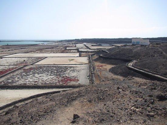El Golfo: Salinas de Janubio