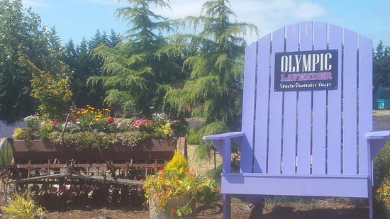 Olympic Lavender Heritage Farm