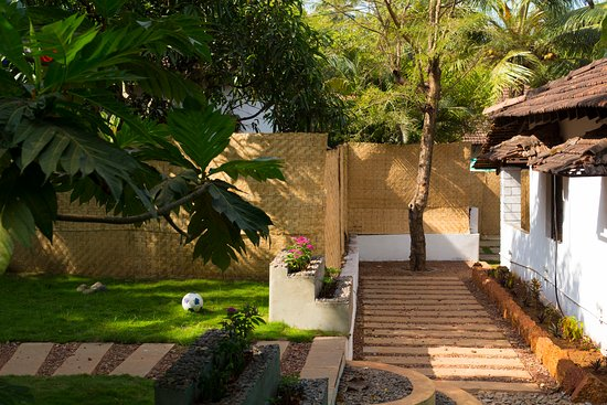 Anjuna, Hindistan: Our cool garden