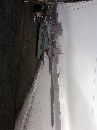 Ishii sou : すぐそばにある御宿漁港です。