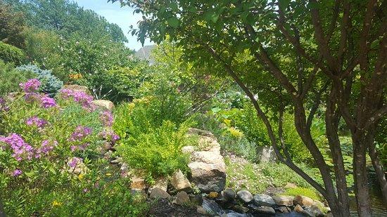 Linnaeus Teaching Gardens: 20160807_135829_large.jpg