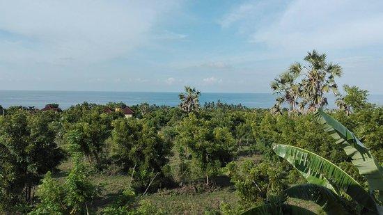 Ocean Villa and Homestay