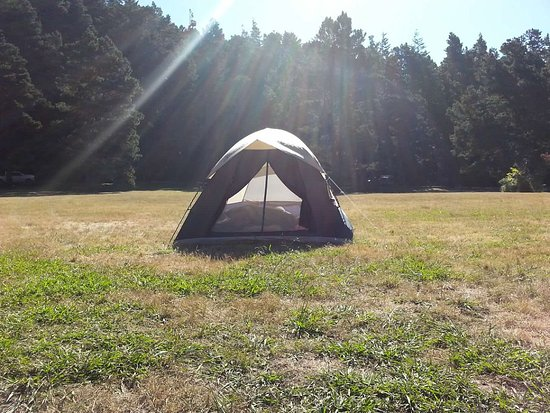 Van Damme State Park: The very top of the Meadow Campsites #69