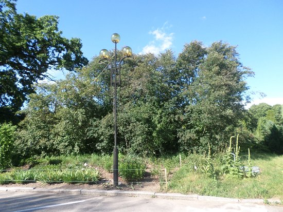 Alexandria Dendrological Park: Фонари на аллеях парка.