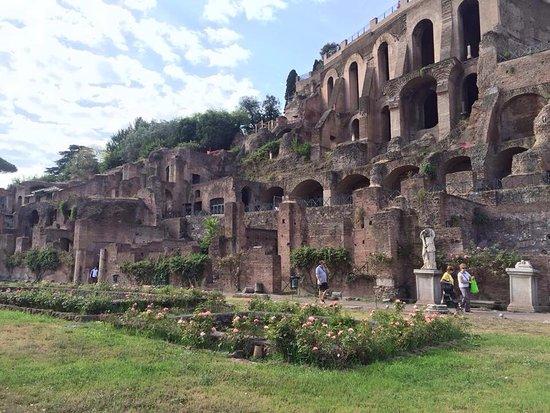 考古学ツアー
