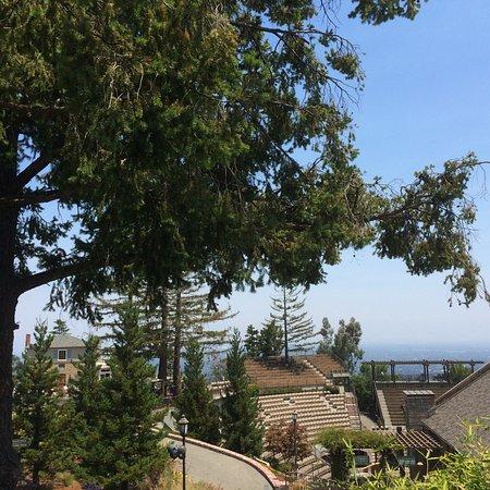 Saratoga, Калифорния: view from terrace