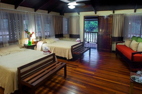 Selva Verde Lodge: rainforest room