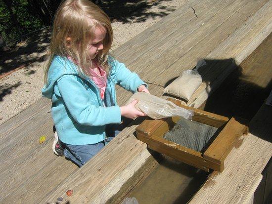 Lakehead, Καλιφόρνια: Sluicing!