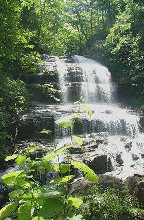 Saluda, Carolina do Norte: Pearson's Falls in July 2016