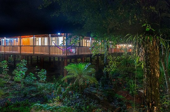 Selva Verde Lodge: Rainforest rooms