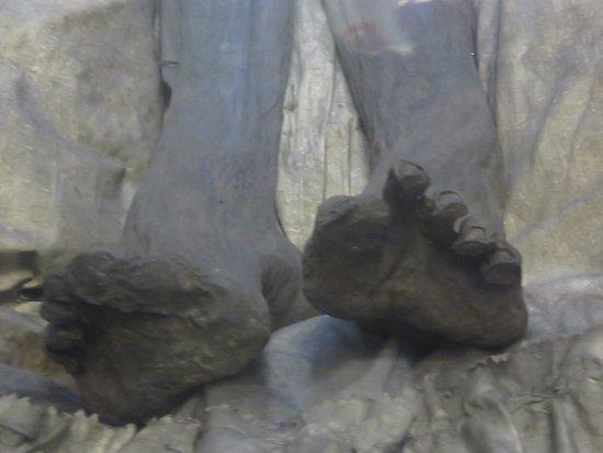 เบอร์โน, สาธารณรัฐเช็ก: mummified feet