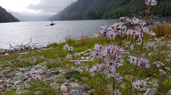 Port Alberni, Canadá: Henderson lake