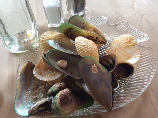 Moeraki, Nueva Zelanda: Chowder leftovers!