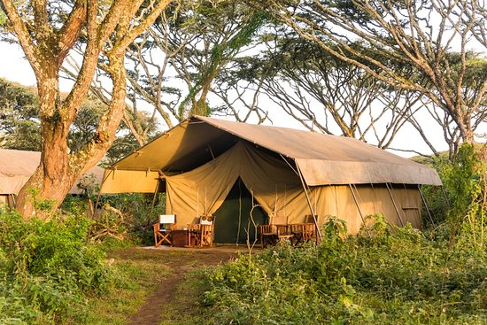 Lemala Ngorongoro Tented Camp: Tented accommodation