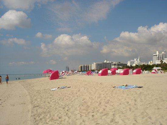 Tradewinds Apartment Hotel: Den skønne strand