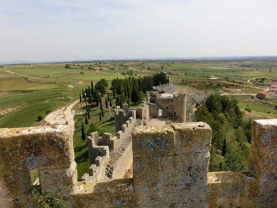 Peñaranda de Duero, España: Vista desde lo alto del castillo