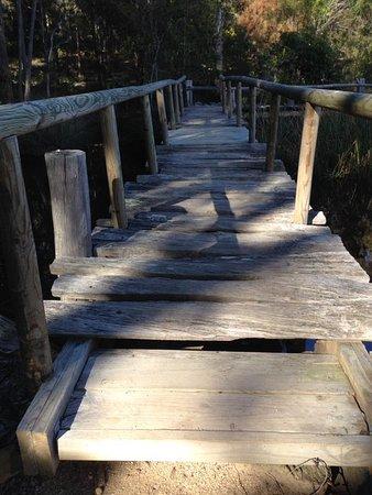 Tathra, Australien: A wooden bridge on one of the bush walks.