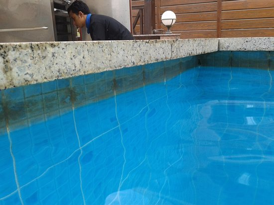 Dirt and algae at the water level in swimming pool- طحالب وإتساخات ...