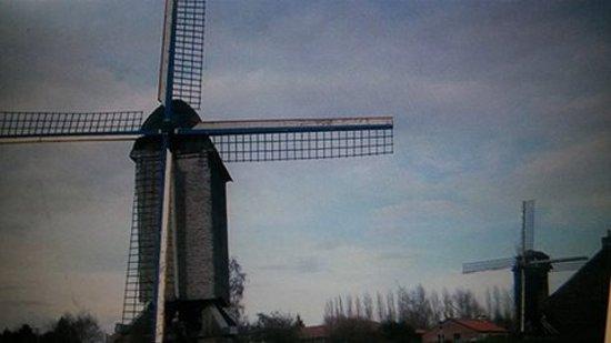 Villeneuve d'Ascq, France : trés joli balade en famille
