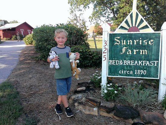 Sunrise Farm Bed and Breakfast: So welcoming!!!