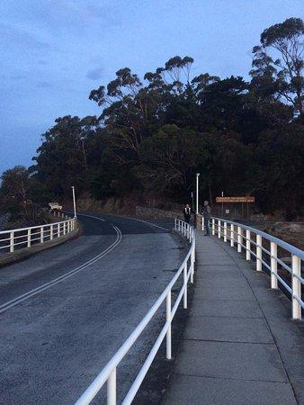 St Helens, أستراليا: just down the road
