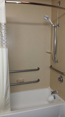 Marshall, MI: Shower/bath in handicap accessible king room