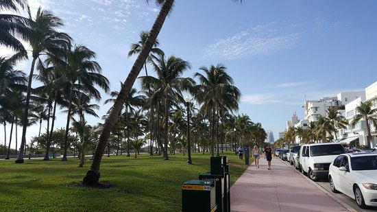 Bayfront Park Photo