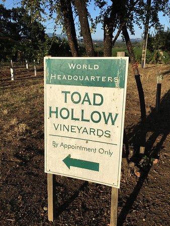 Toad Hollow Vineyards: photo6.jpg
