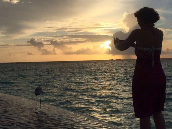 Lily Beach Resort & Spa: Spectacular sunset
