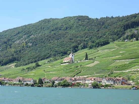 Canton of Neuchatel, Zwitserland: vineyards near Biel