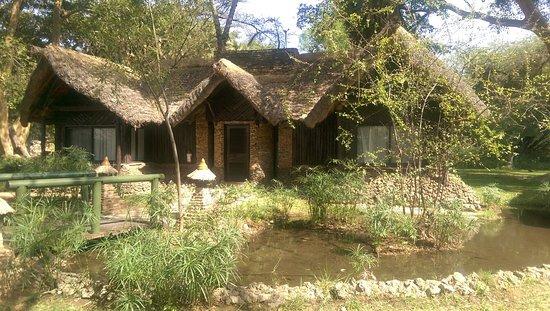 Sarova Shaba Game Lodge: IMAG0364_large.jpg
