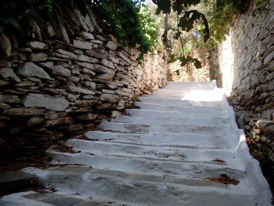 Village Path: IMG_20160808_152805_large.jpg