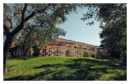 terrazza sull\'orto - Foto di La Casa di Ora - Tenuta Biodinamica Le ...