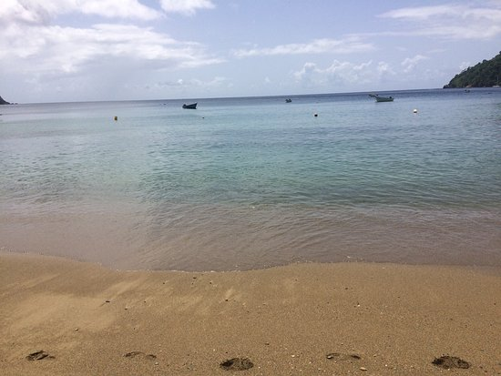 Black Rock, Tobago: Pictures from the room pool area and beach